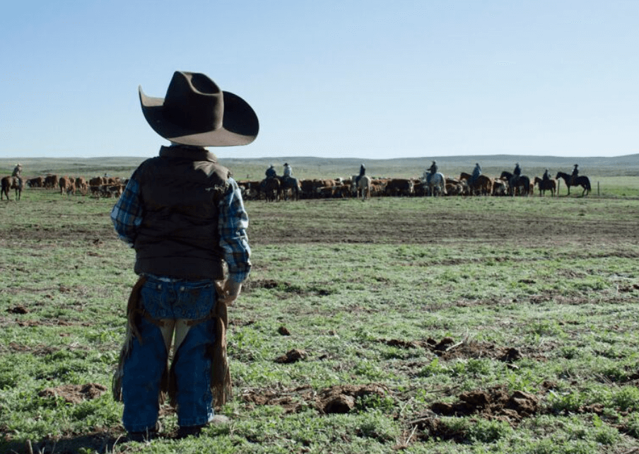 The Cowboy: Creating brand loyalty with Certified Hereford Beef
