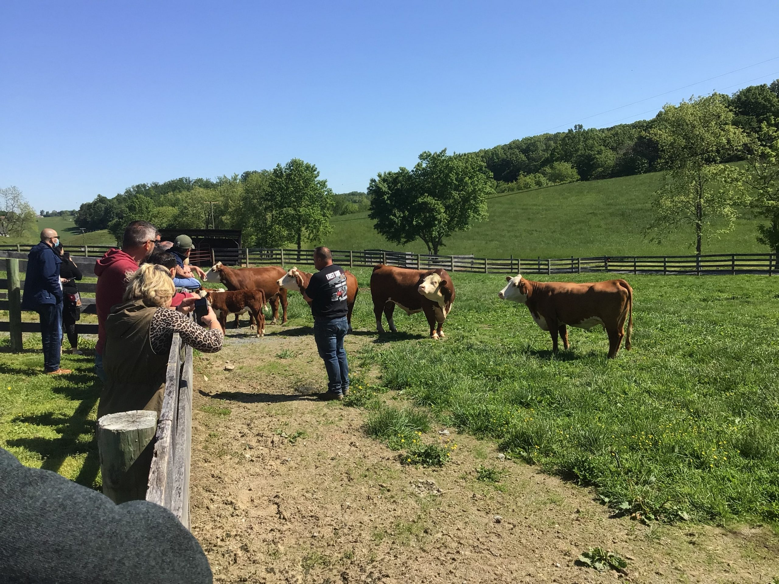 Certified Hereford Beef® Team Sponsors Farm Tour for FoodPRO Distributors